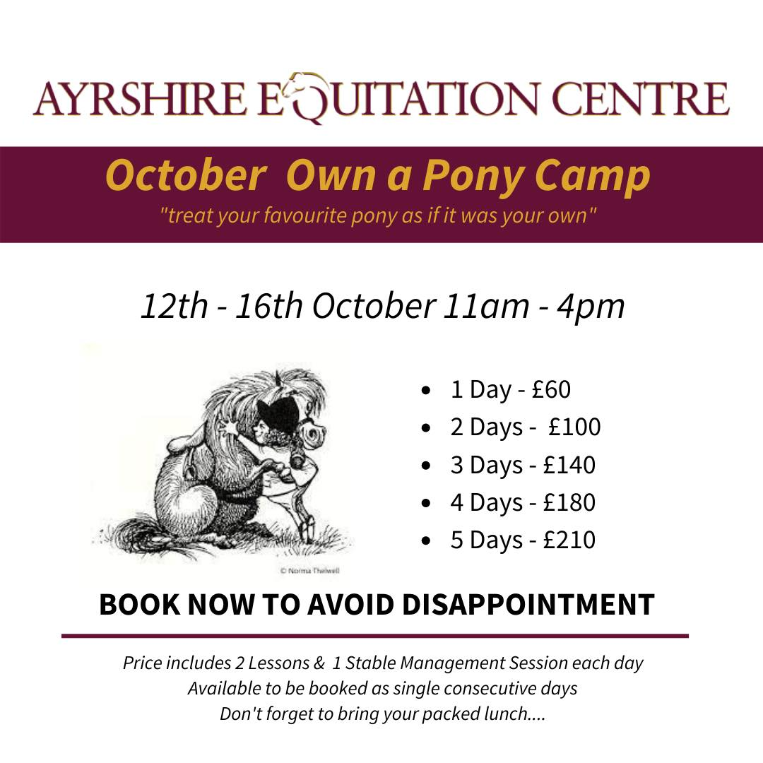 October Own a Pony Camp